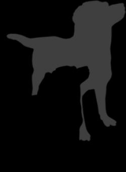 Bloodhound clipart retriever