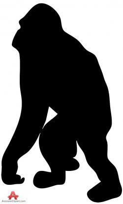 Orangutan clipart baboon