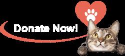 Trap clipart animal rescue