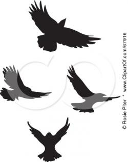 Blackbird clipart flying crows