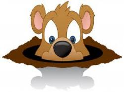 Groundhog clipart sees shadow