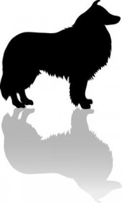 Shetland Sheepdog clipart