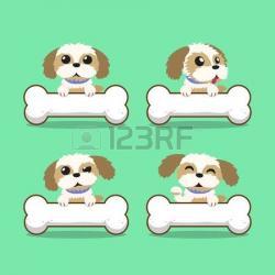Shih Tzu clipart cute