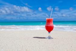 Shoreline clipart beach scenery