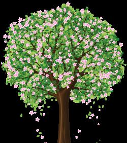 Barren clipart spring tree