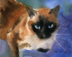 Siamese Cat clipart applehead