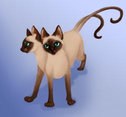 Siamese Cat clipart siam