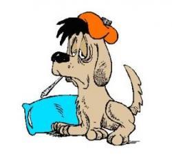 Pets clipart sick