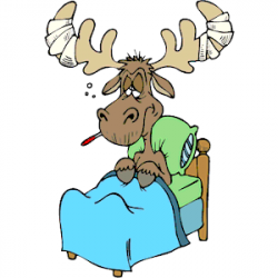 Sick clipart moose