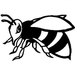 Wasp clipart black and white