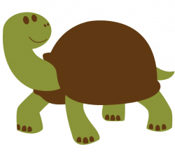 Tortoise clipart simple