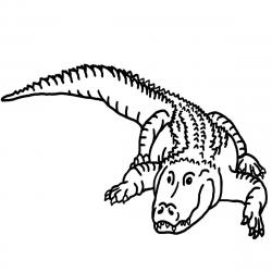 B&w clipart crocodile