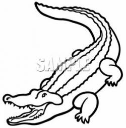 Crocodile clipart line drawing