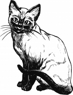 Siamese Cat clipart black and white