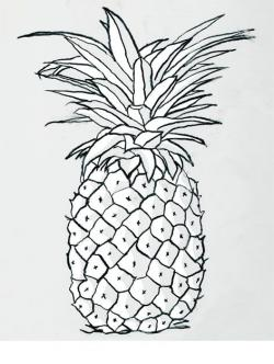 Drawn pineapple black and white