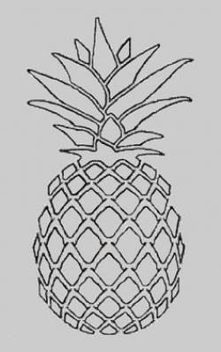 Drawn pineapple simple