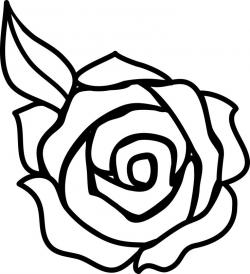 White Rose clipart decorative