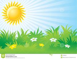 Camomile clipart spring day