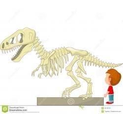 Exhibit clipart dinosaur museum