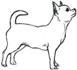 Chihuahua clipart black and white