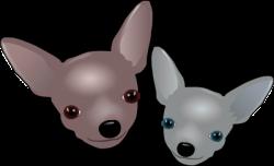 Chihuahua clipart chiwawa