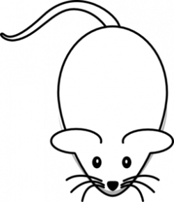 Whiskers clipart small mouse