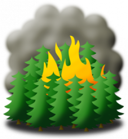 Disaster clipart forest fire