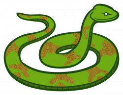 Serpent clipart transparent background