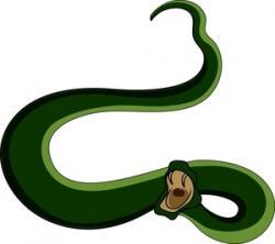 Fangs clipart snake open mouth