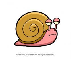 Slow clipart snail