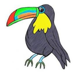 Toucanet clipart rainforest snake