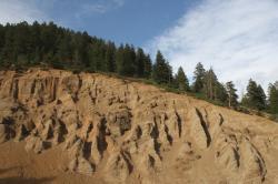 Mountain Ridge clipart mountain tree