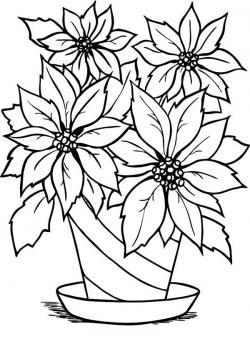Poinsettia clipart outline