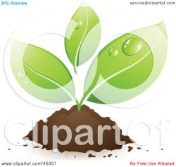 Soil clipart small plant