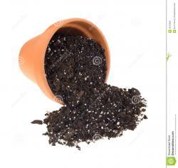 Soil clipart white background