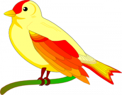 Canary clipart simple bird