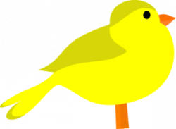 Brds clipart yellow