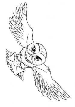 Drawn owl harry potter owl