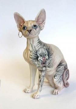 Sphynx Cat clipart furless