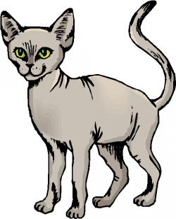 Sphynx Cat clipart sphinx cat