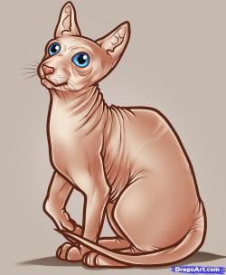 Sphynx Cat clipart swinx