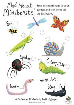 Caterpillar clipart minibeast