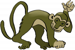 Spider Monkey clipart
