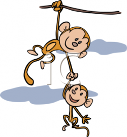 Spider Monkey clipart moneky