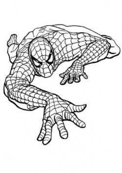 Spiderman clipart black and white