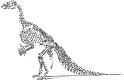 Dinosaur clipart extinct