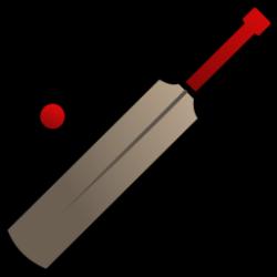 Cricket clipart bat ball