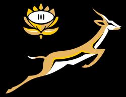 Springbok clipart scotland