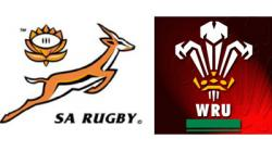 Springbok clipart wales