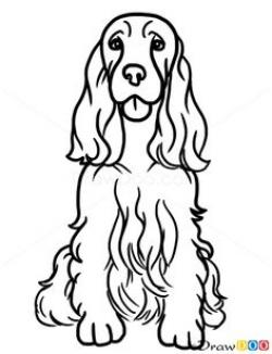 Springer Spaniel clipart drawing